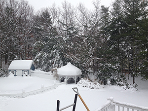 Shoveling heavy wet snow