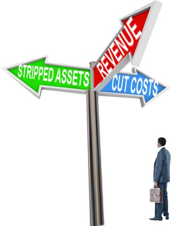 Revenue, Stripped Assets, Cut Costs